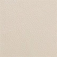 Pearlescent Leather Crystal