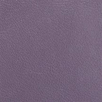 Pearlescent Leather Amethyst
